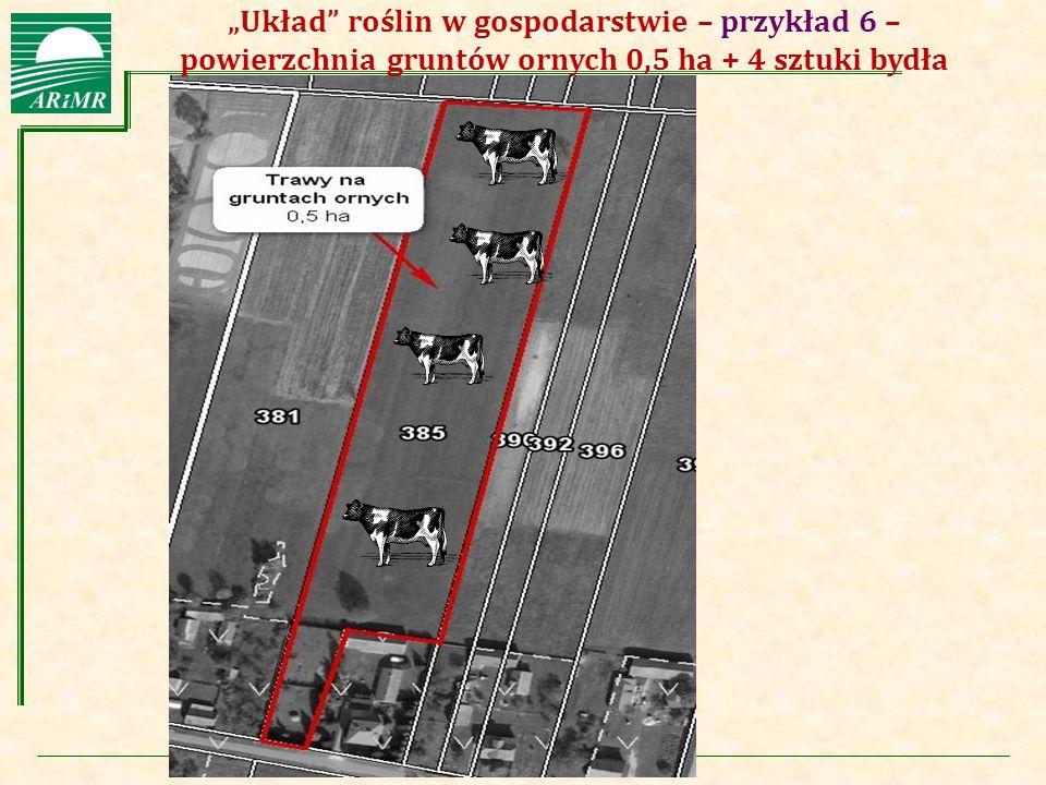 """""""Układ roślin w gospodarstwie – przykład 6 – powierzchnia gruntów ornych 0,5 ha + 4 sztuki bydła"""