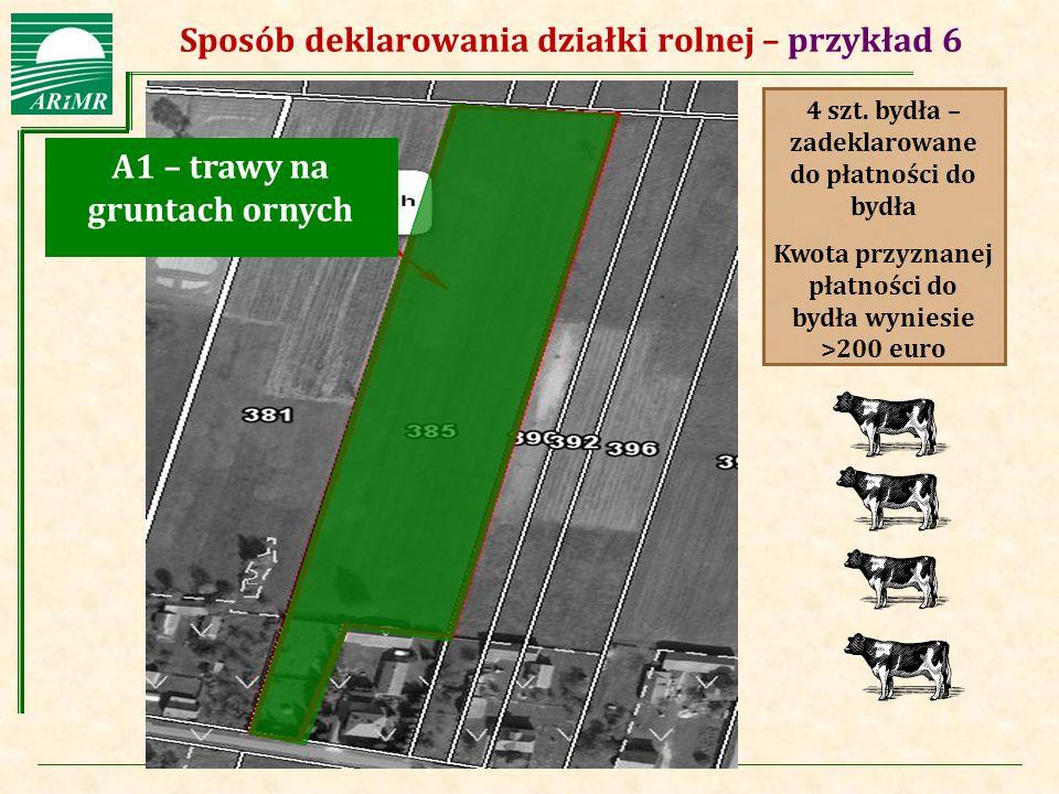 Sposób deklarowania działki rolnej – przykład 6