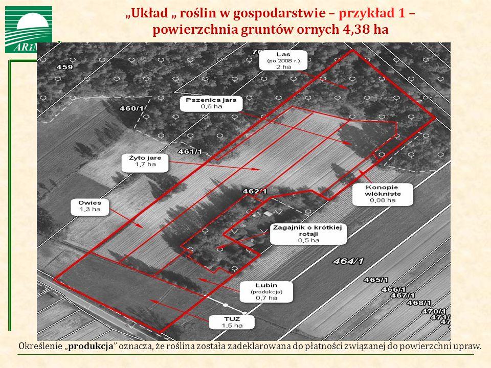 """""""Układ """" roślin w gospodarstwie – przykład 1 – powierzchnia gruntów ornych 4,38 ha"""