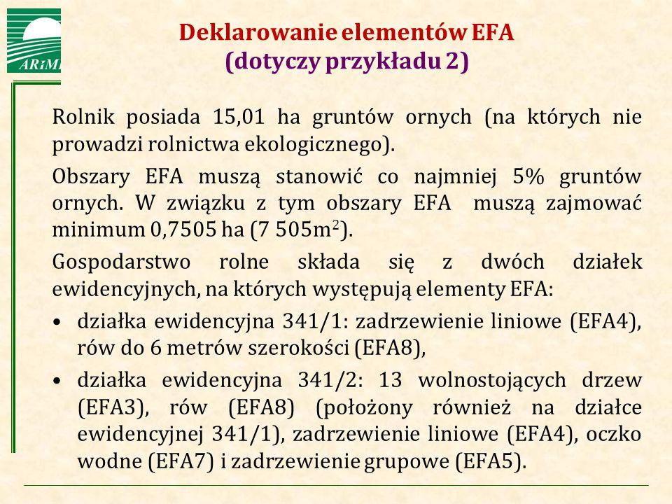 Deklarowanie elementów EFA (dotyczy przykładu 2)