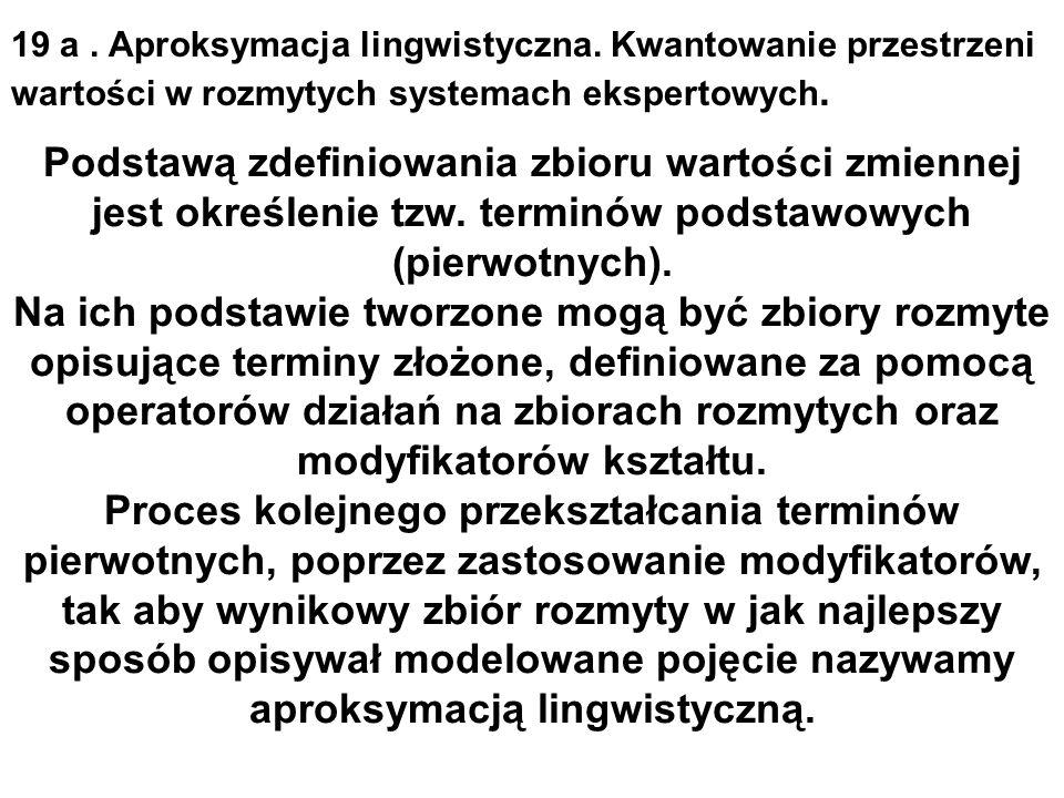 19 a. Aproksymacja lingwistyczna