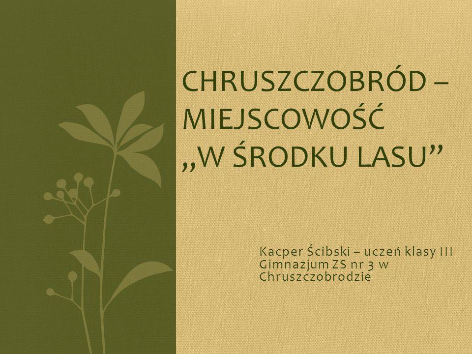 """Chruszczobród – miejscowość """"w środku lasu"""