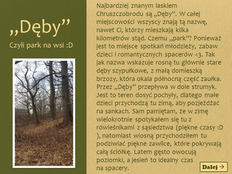"""""""Dęby Czyli park na wsi :D"""