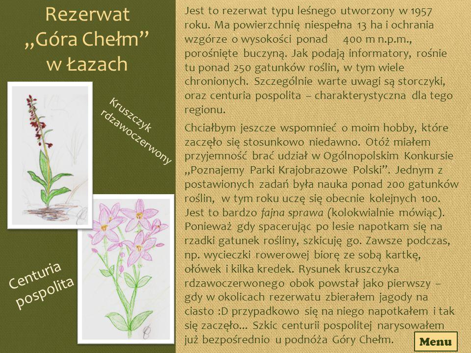 """Rezerwat """"Góra Chełm w Łazach"""