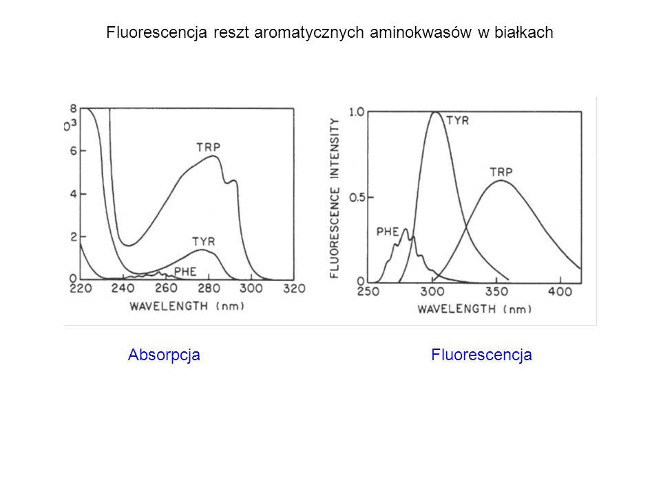 Absorpcja Fluorescencja