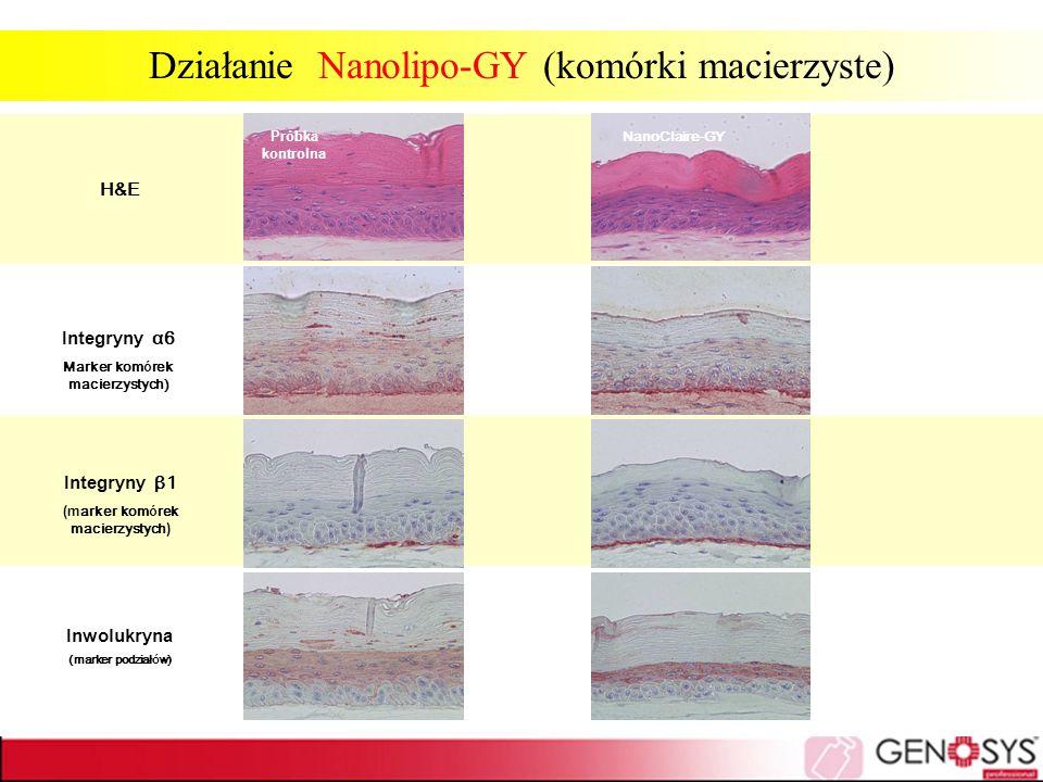 Działanie Nanolipo-GY (komórki macierzyste)