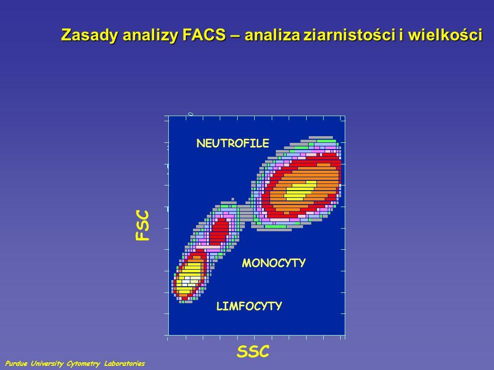 Zasady analizy FACS – analiza ziarnistości i wielkości