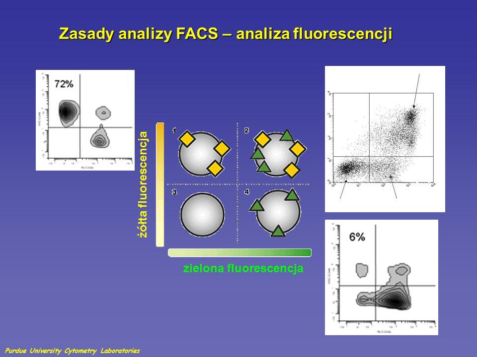 Zasady analizy FACS – analiza fluorescencji