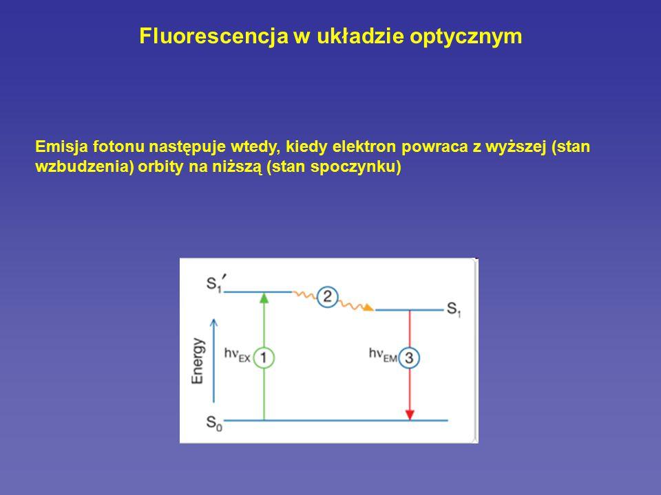 Fluorescencja w układzie optycznym