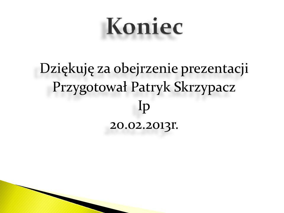Koniec Dziękuję za obejrzenie prezentacji Przygotował Patryk Skrzypacz Ip 20.02.2013r.
