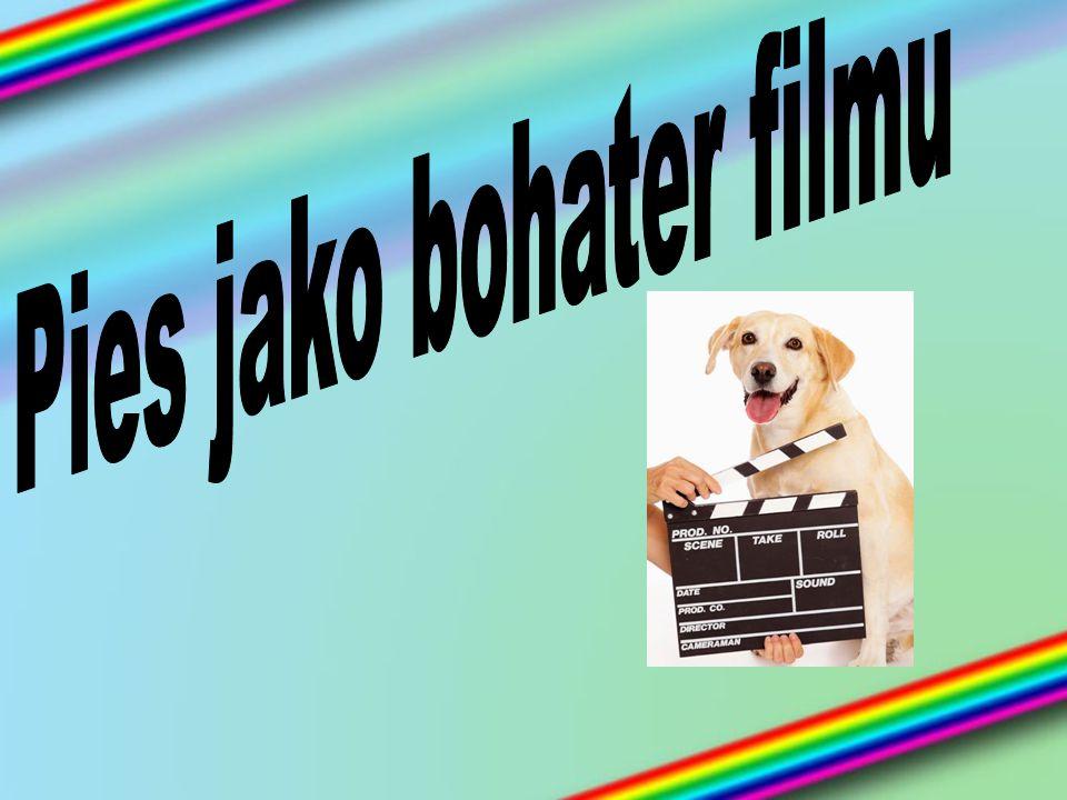 Pies jako bohater filmu