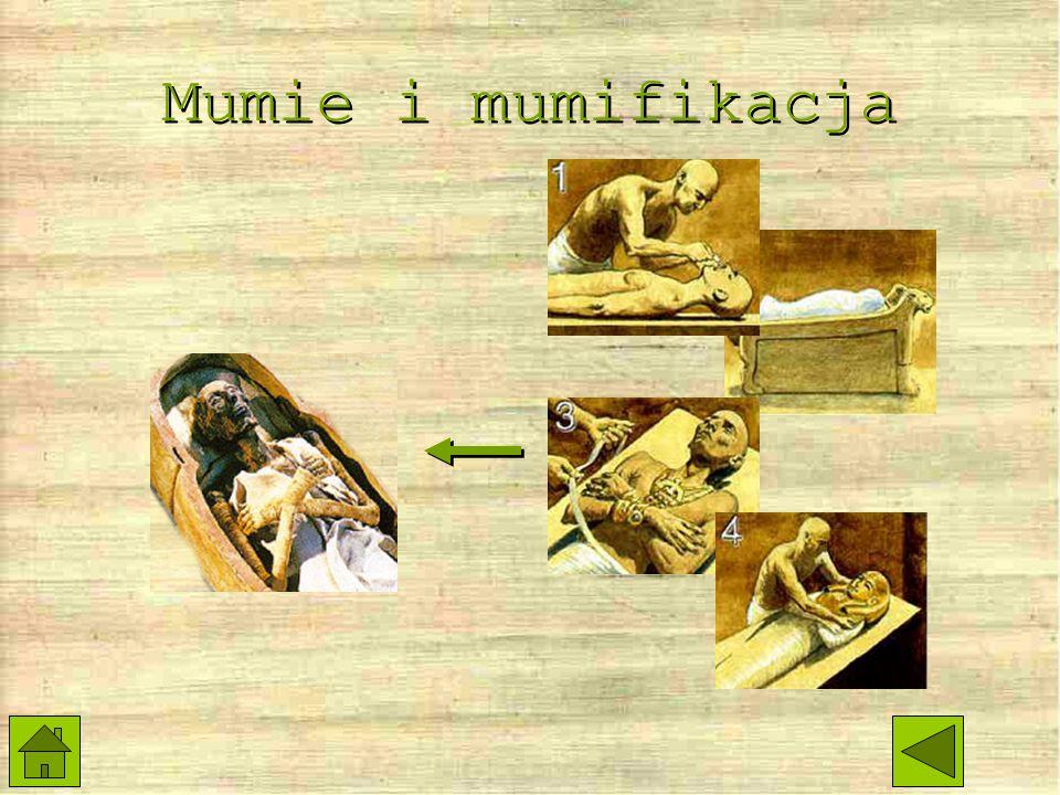 Mumie i mumifikacja