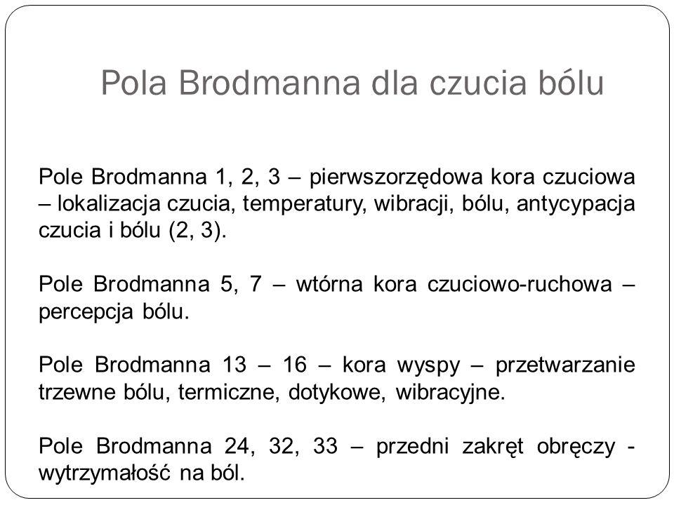 Pola Brodmanna dla czucia bólu