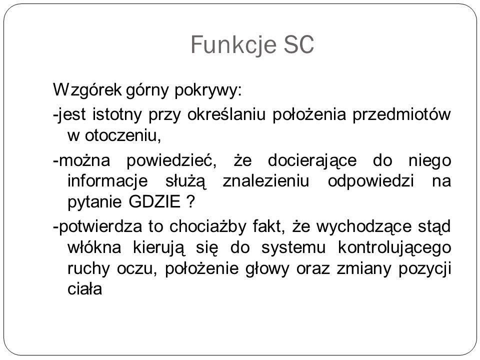 Funkcje SC