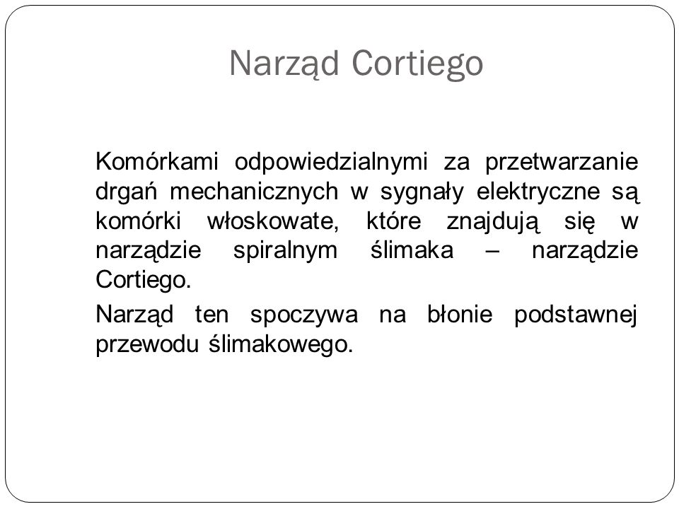 Narząd Cortiego