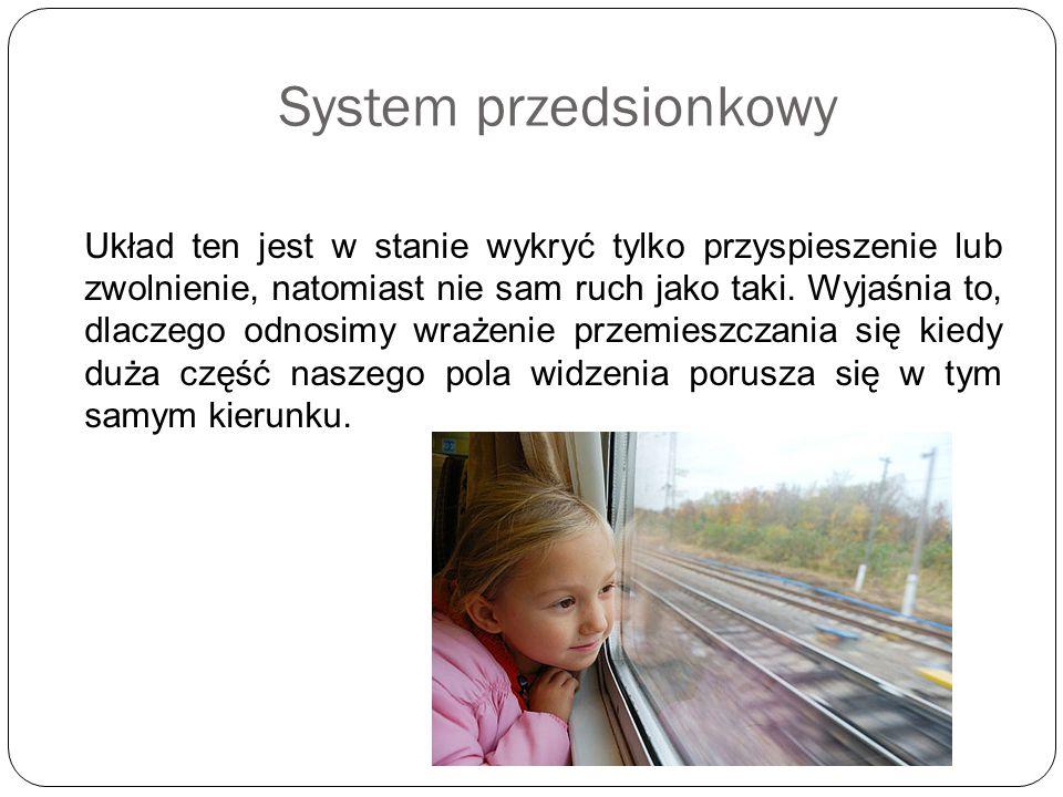 System przedsionkowy