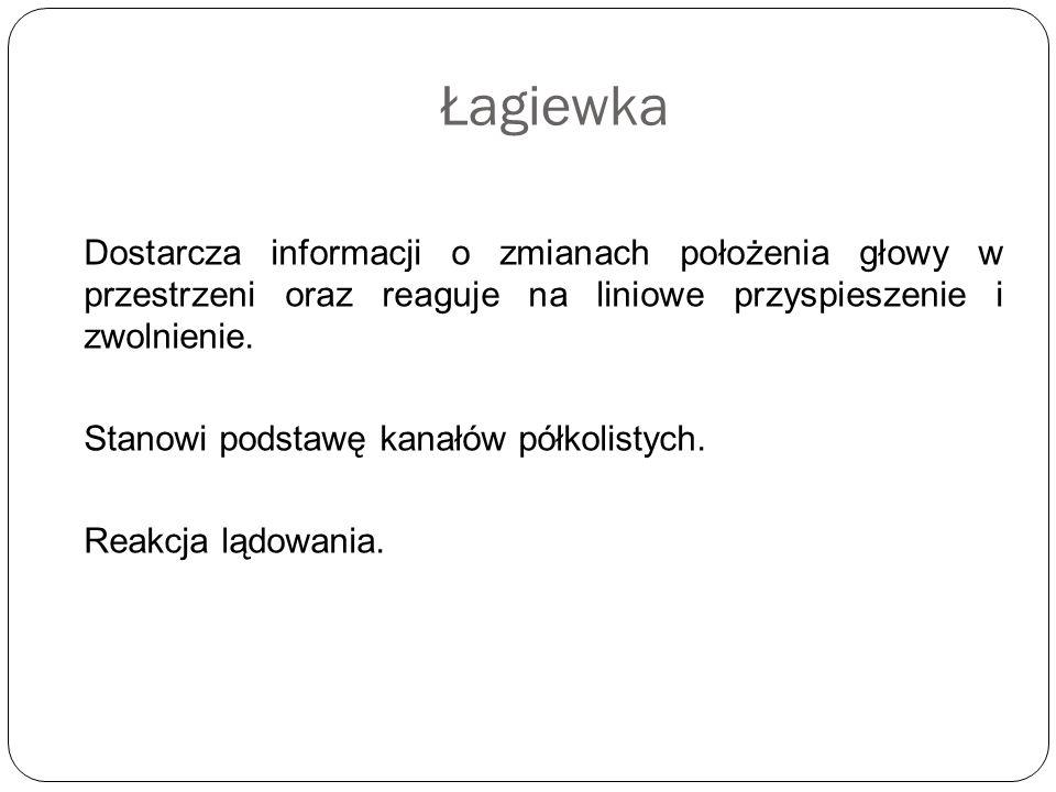 Łagiewka