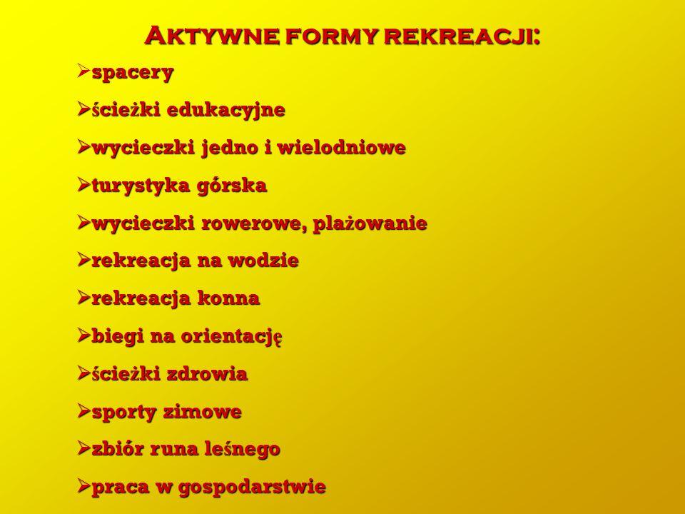 Aktywne formy rekreacji: