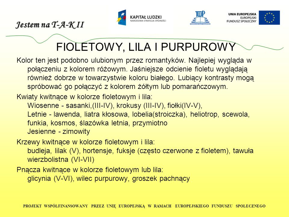 FIOLETOWY, LILA I PURPUROWY