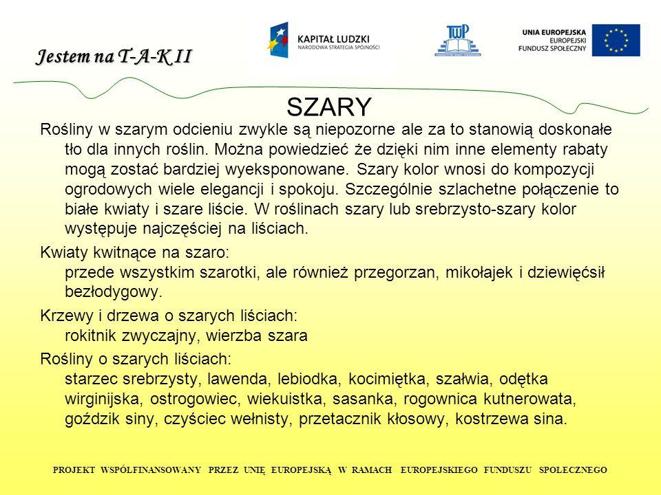 SZARY
