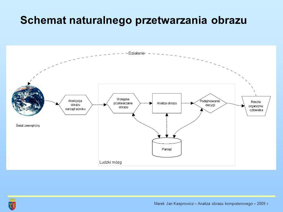 Schemat naturalnego przetwarzania obrazu