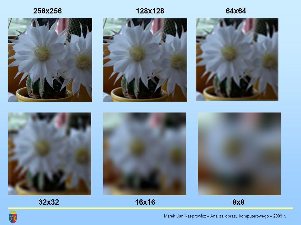 256x256 128x128 64x64 32x32 16x16 8x8 Marek Jan Kasprowicz – Analiza obrazu komputerowego – 2009 r.