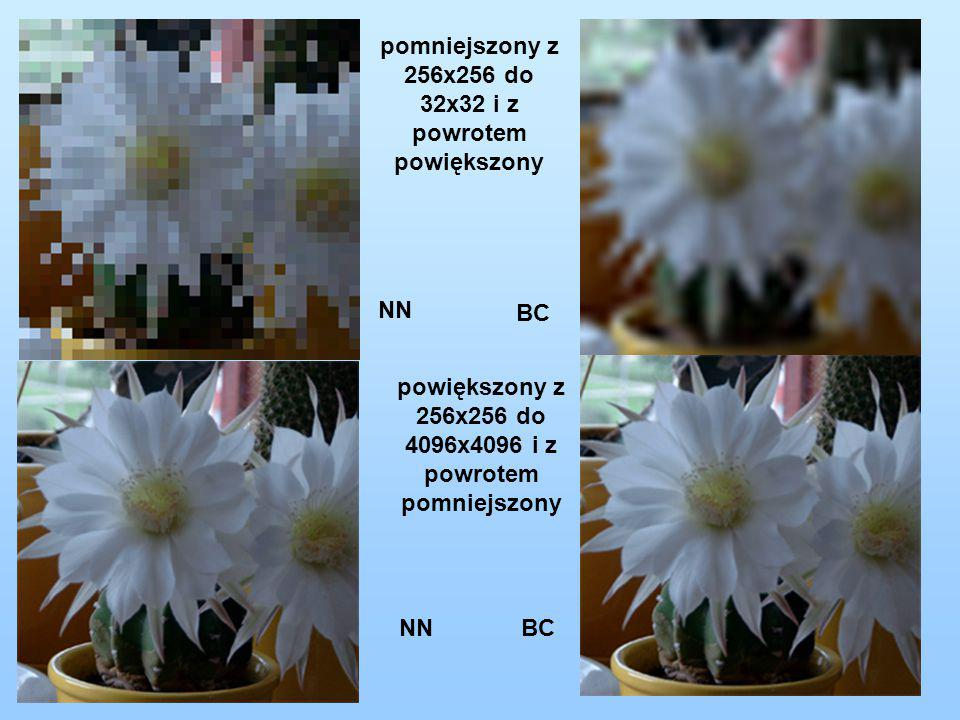 pomniejszony z 256x256 do 32x32 i z powrotem powiększony