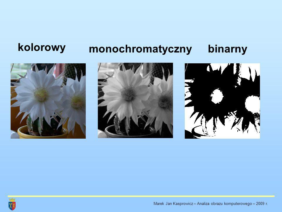 kolorowy monochromatyczny binarny