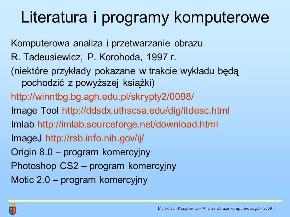 Literatura i programy komputerowe