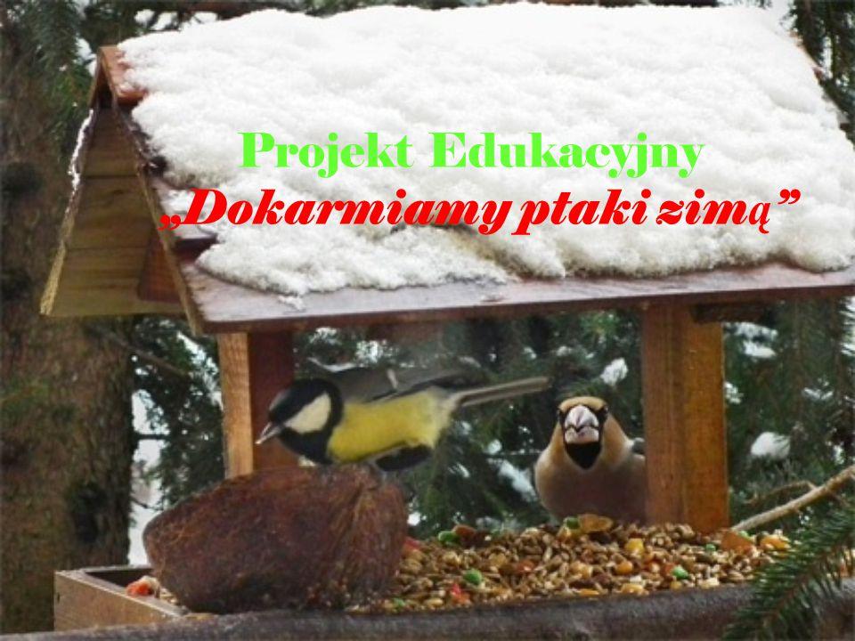"""Projekt Edukacyjny """"Dokarmiamy ptaki zimą"""