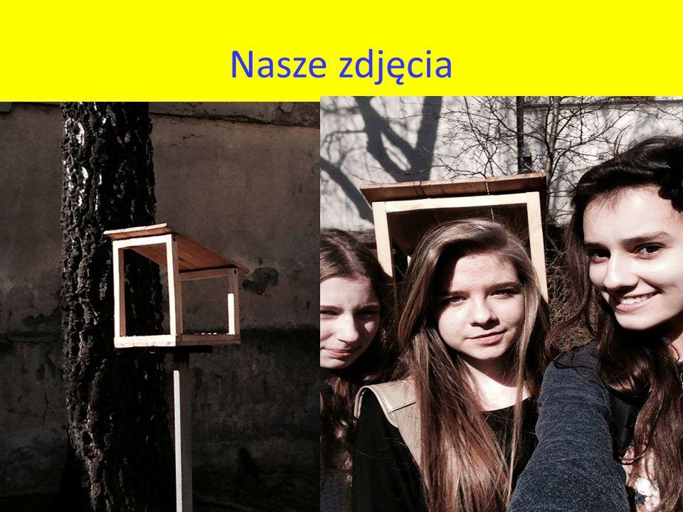 Nasze zdjęcia