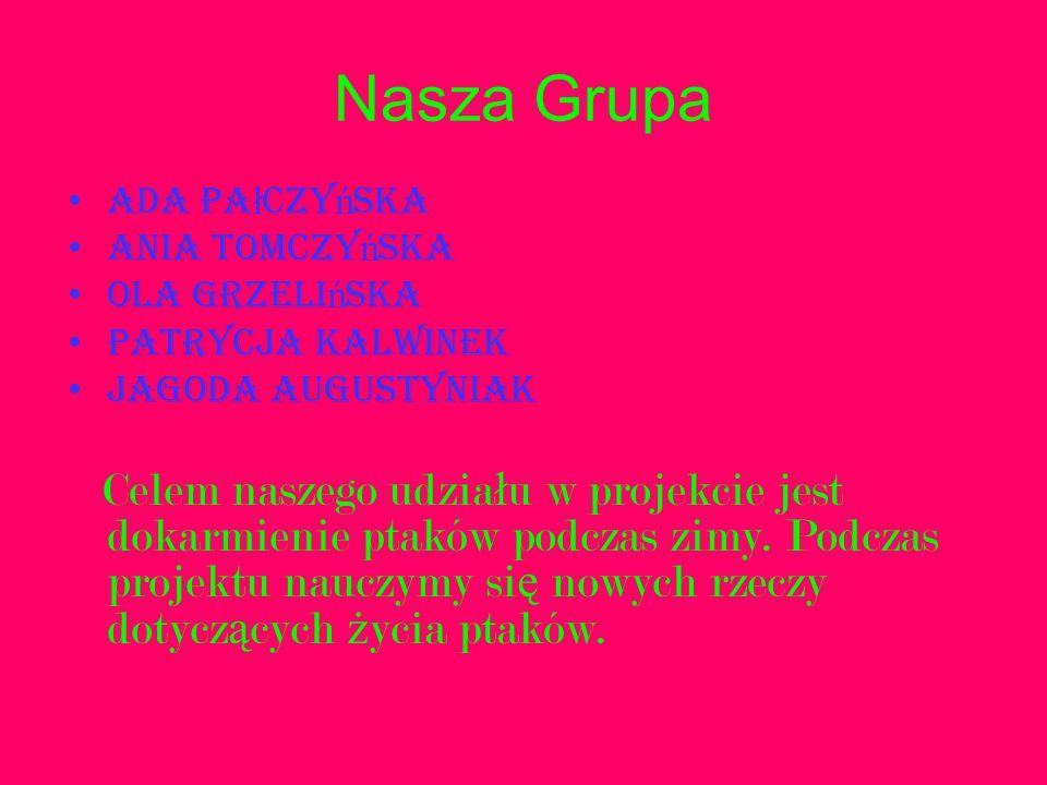 Nasza Grupa Ada Pałczyńska. Ania Tomczyńska. Ola Grzelińska. Patrycja Kalwinek. Jagoda Augustyniak.