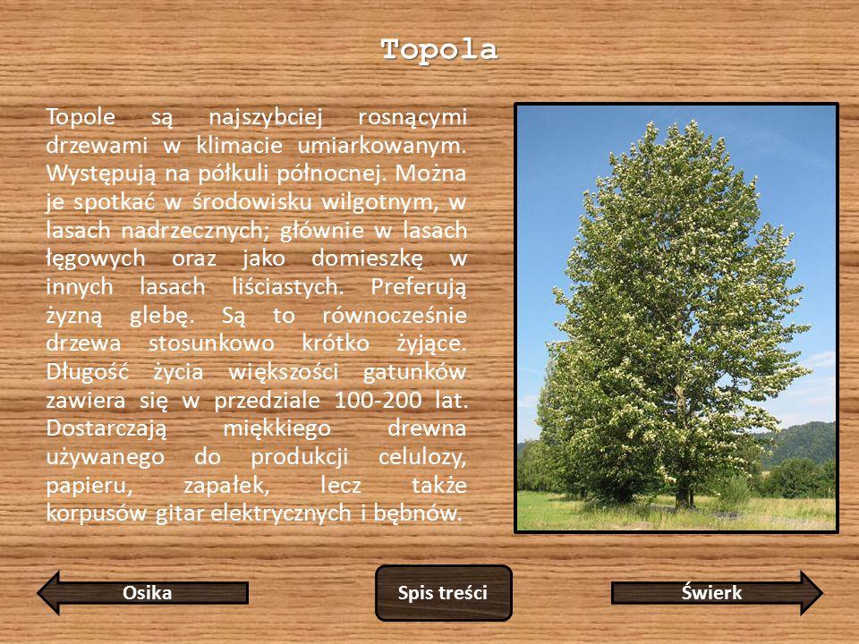 Topola
