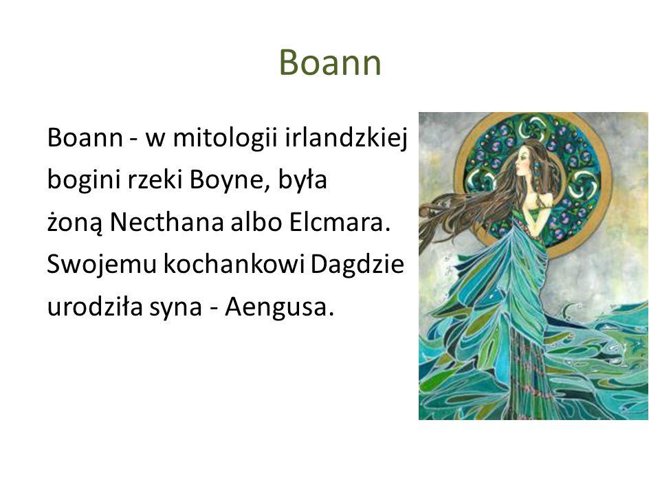 Boann Boann - w mitologii irlandzkiej bogini rzeki Boyne, była żoną Necthana albo Elcmara.