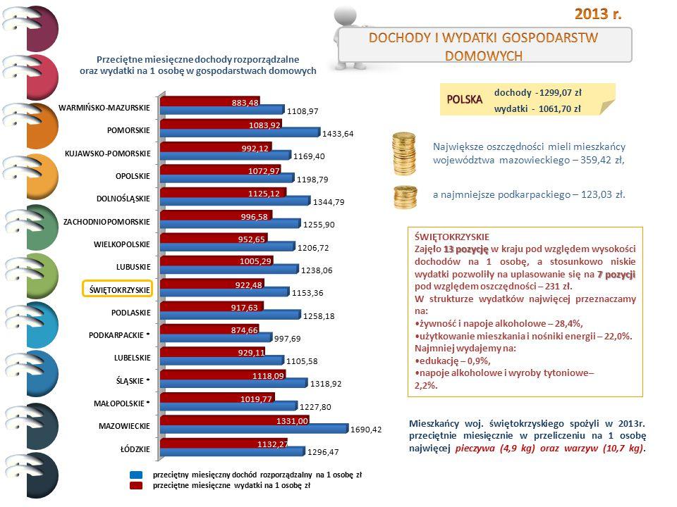 2013 r. DOCHODY I WYDATKI GOSPODARSTW DOMOWYCH POLSKA