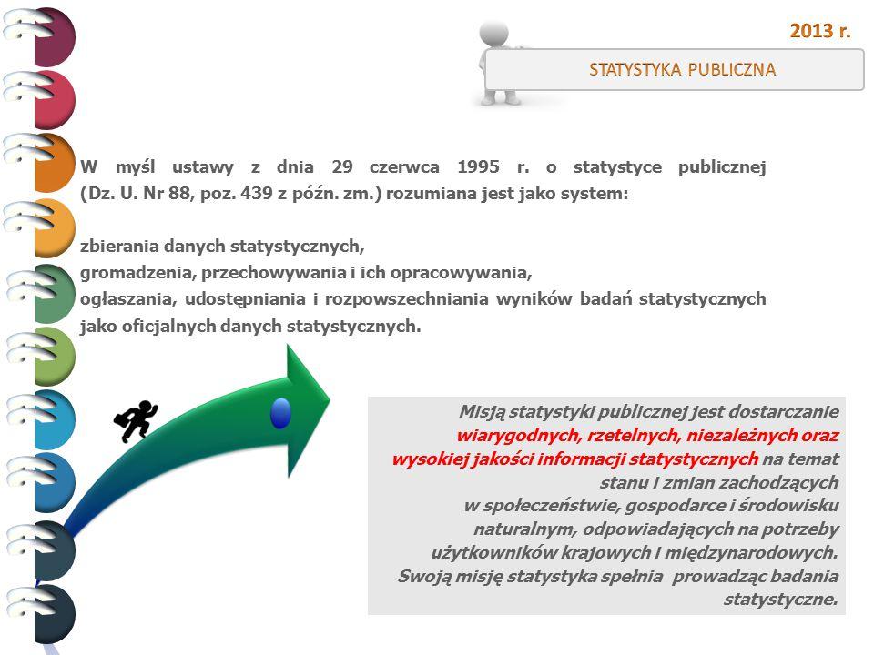 2013 r. STATYSTYKA PUBLICZNA