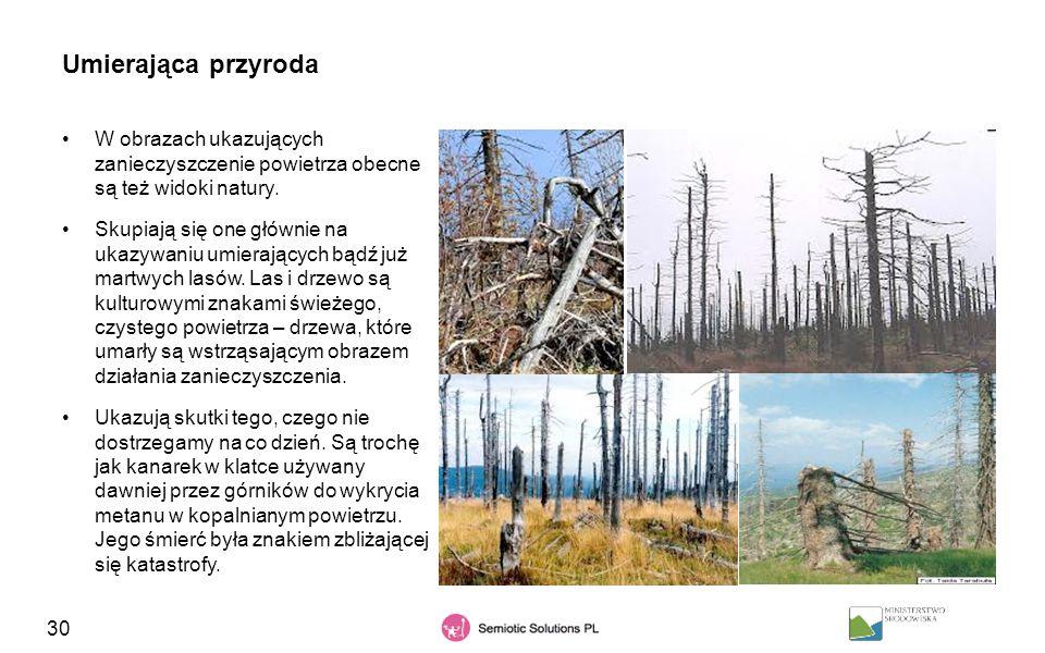 Umierająca przyroda W obrazach ukazujących zanieczyszczenie powietrza obecne są też widoki natury.