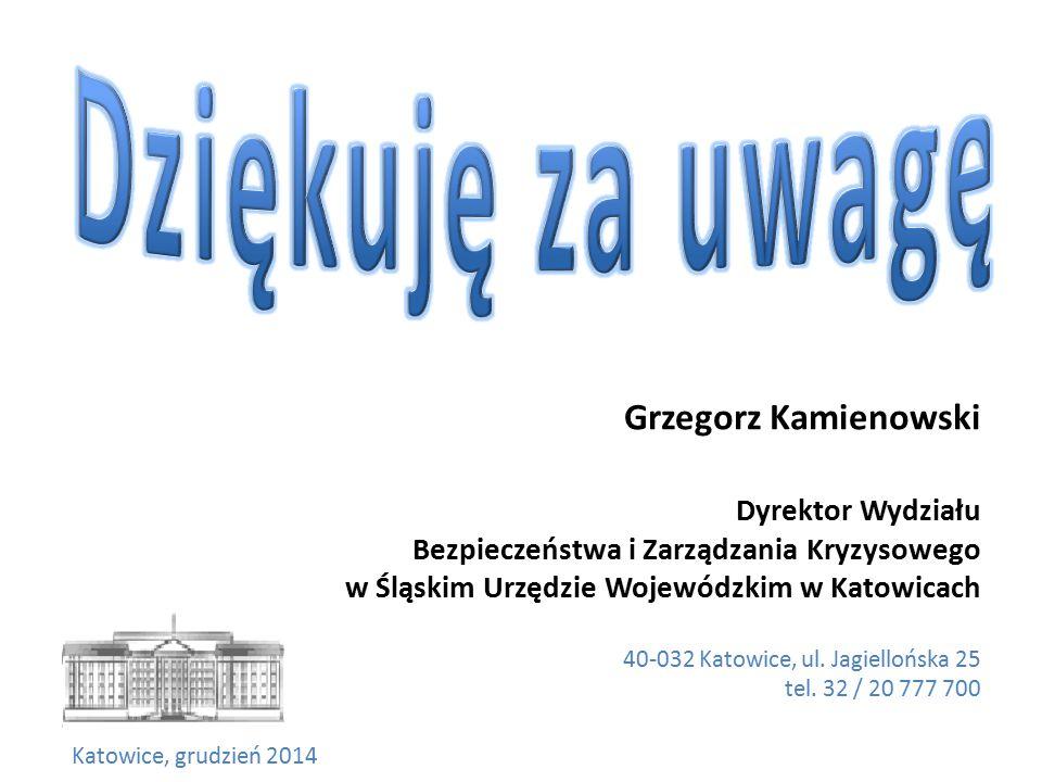 Dziękuję za uwagę Grzegorz Kamienowski Dyrektor Wydziału