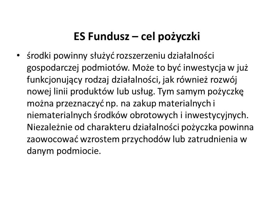 ES Fundusz – cel pożyczki