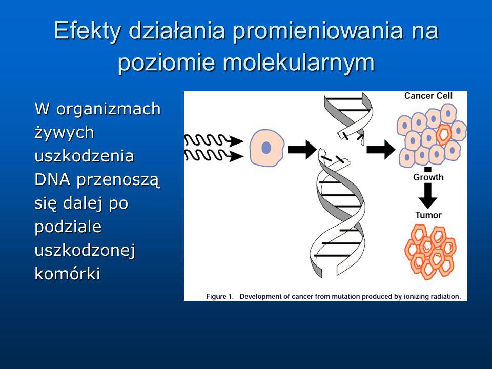 Efekty działania promieniowania na poziomie molekularnym
