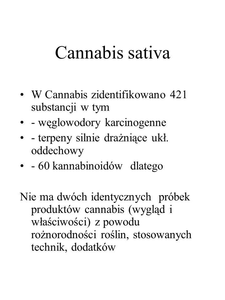 Cannabis sativa W Cannabis zidentifikowano 421 substancji w tym