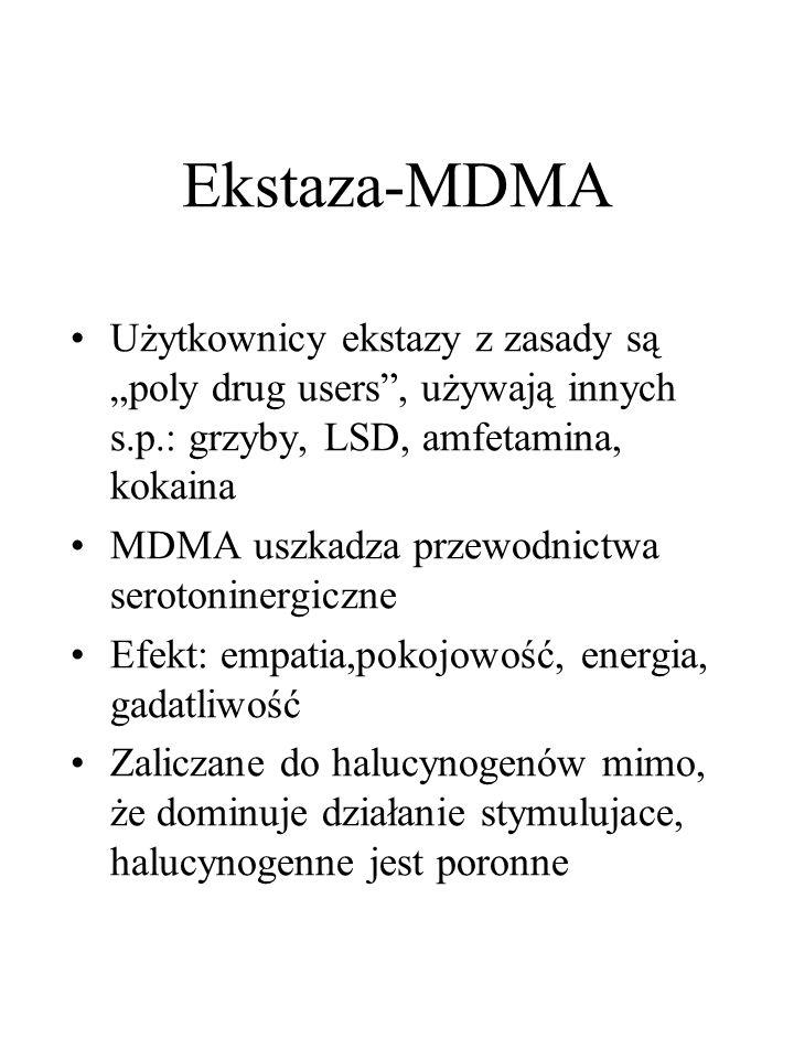 """Ekstaza-MDMA Użytkownicy ekstazy z zasady są """"poly drug users , używają innych s.p.: grzyby, LSD, amfetamina, kokaina."""