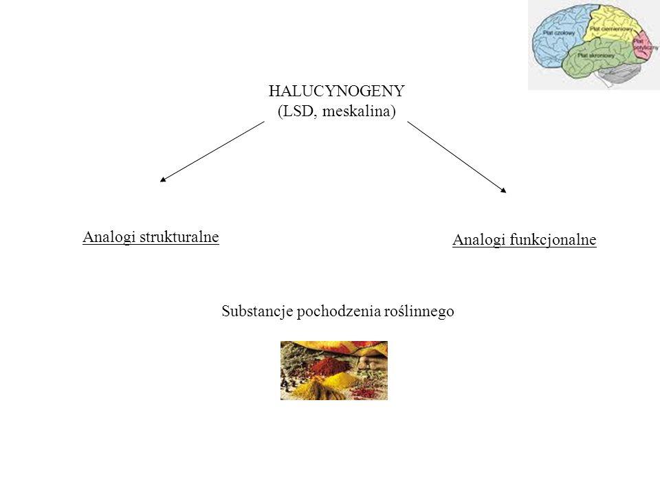 HALUCYNOGENY (LSD, meskalina) Analogi strukturalne.