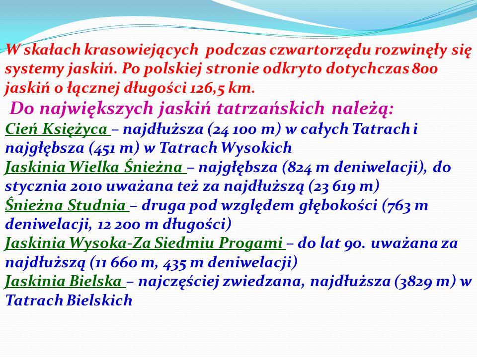 Do największych jaskiń tatrzańskich należą: