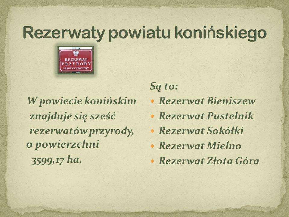 Rezerwaty powiatu konińskiego