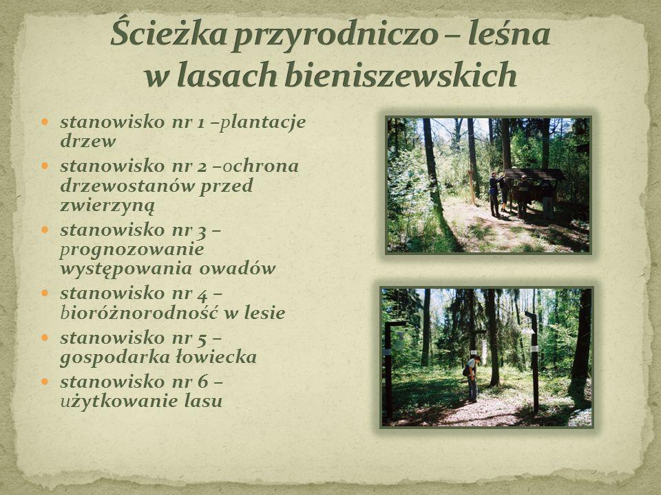 Ścieżka przyrodniczo – leśna w lasach bieniszewskich
