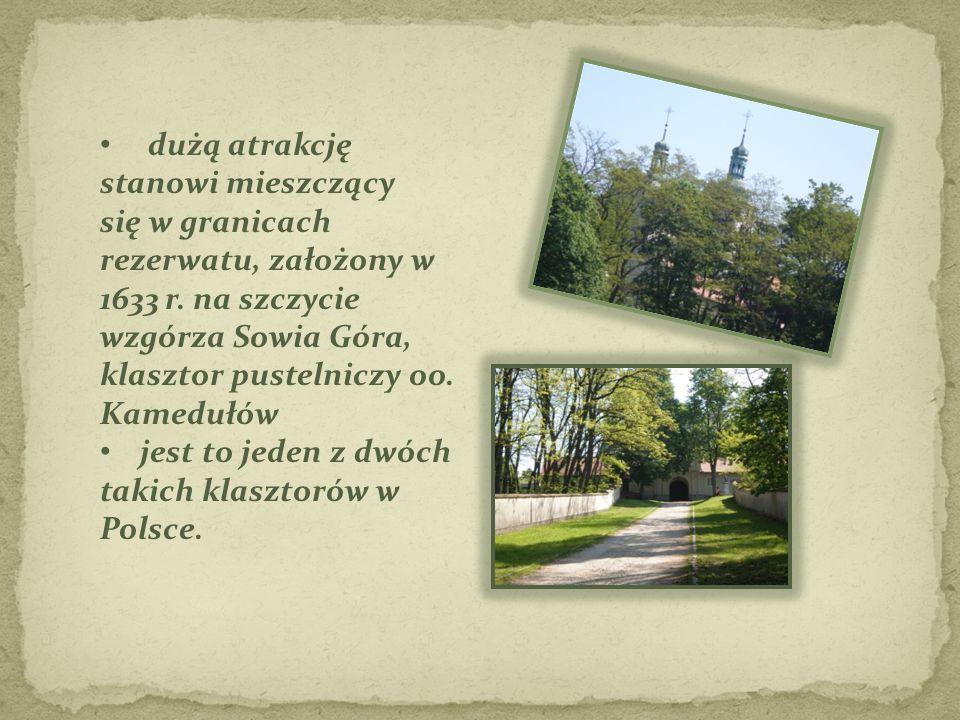 dużą atrakcję stanowi mieszczący się w granicach rezerwatu, założony w 1633 r. na szczycie wzgórza Sowia Góra, klasztor pustelniczy oo. Kamedułów