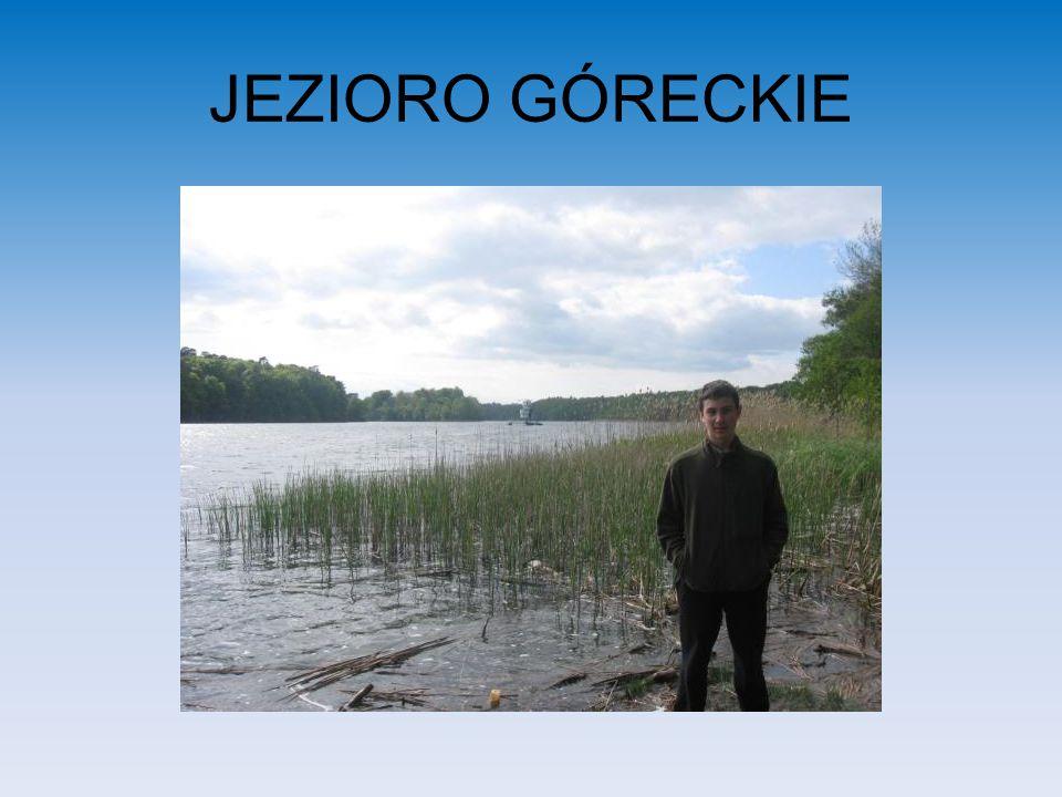 JEZIORO GÓRECKIE