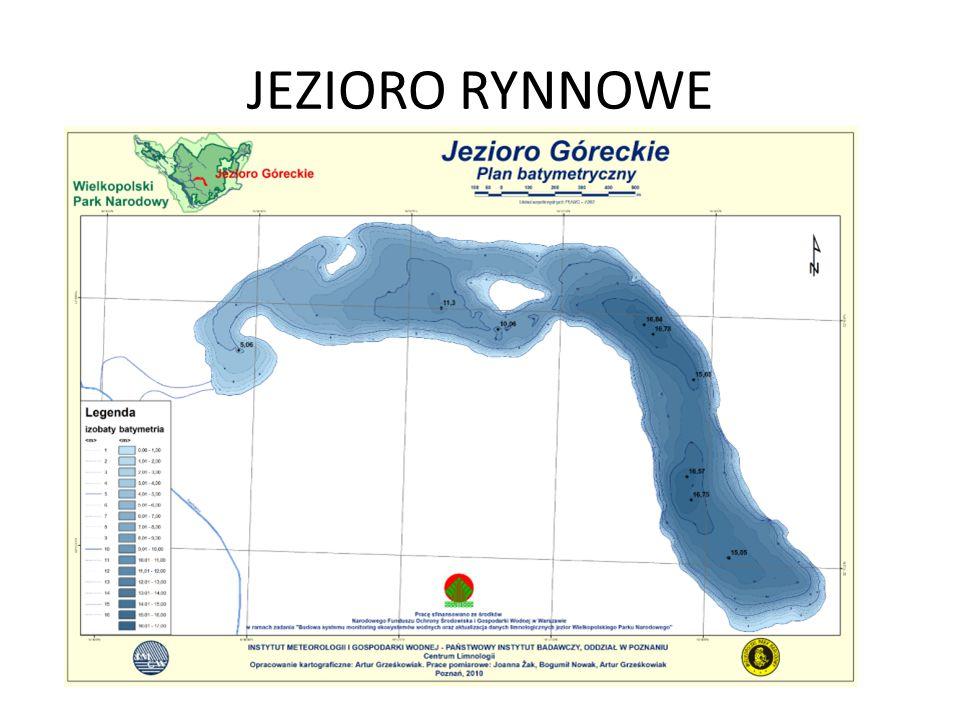 JEZIORO RYNNOWE