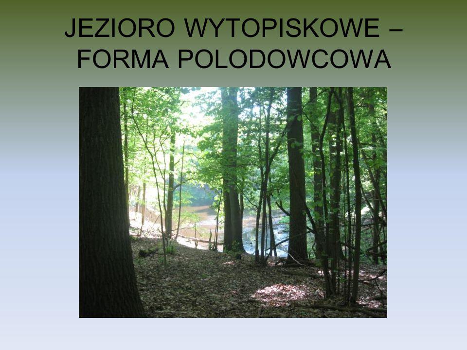 JEZIORO WYTOPISKOWE – FORMA POLODOWCOWA